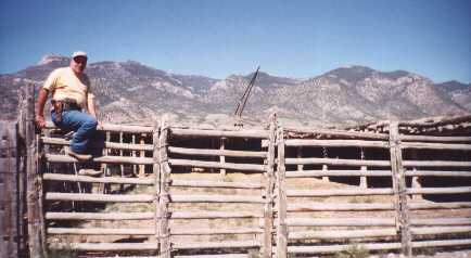 this log fence surrounds a large portion of the property